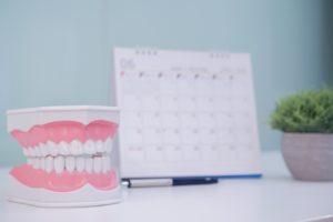 Dental model next to calendar, maximize dental insurance benefits